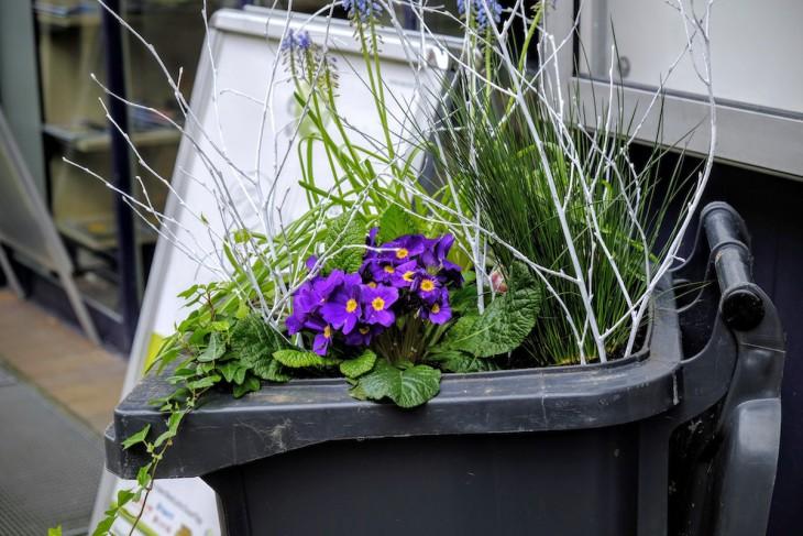 Primeln in der Mülltonne – eine Dekorationsidee, die womöglich sinnbildlich für den gesamten Straßenzug steht