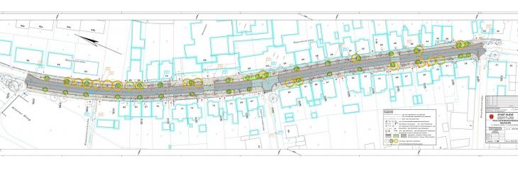 34 Bäume, Alleecharakter: die Planungen der Stadt