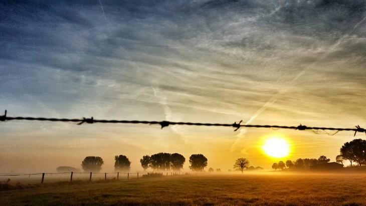 Sonne unter Draht (Foto © Claudia Philipp)