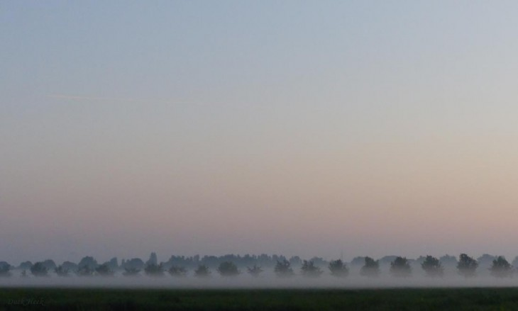 Super Morgen, Super Nebel (Foto: © Duck Heek)