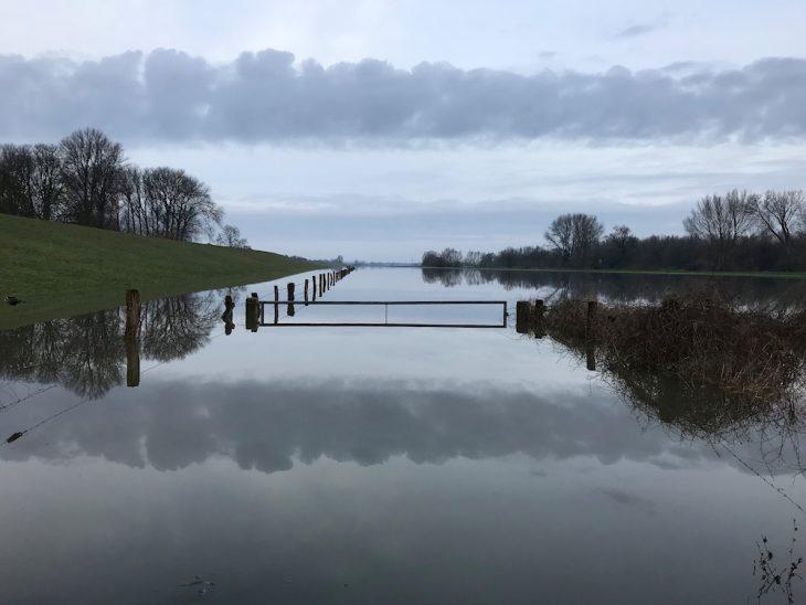 Der Rhein schenkt ein: Ausgeufertes Stromverhalten (Foto: Helga Diekhöfer)