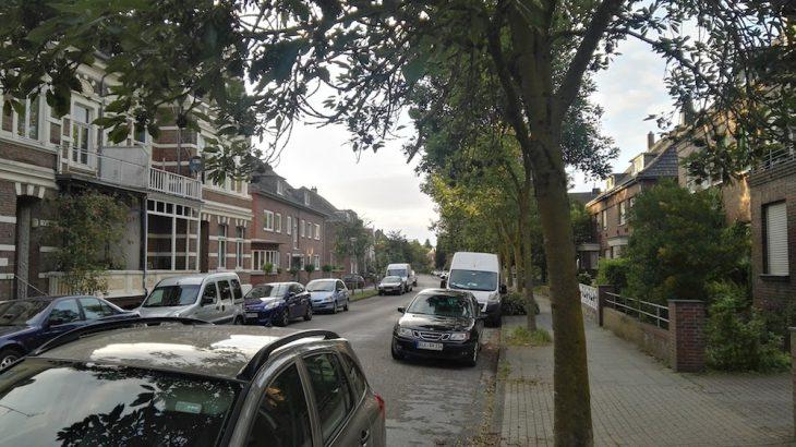 Abendansicht der Spyckstraße: Ein Baum ist unheilbar krank