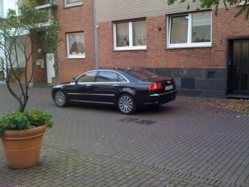 Majestätischer Audi am Opschlag
